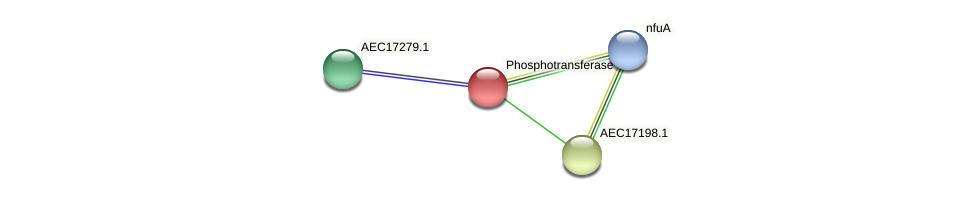 UMN179_01176 protein (Gallibacterium anatis) - STRING interaction network
