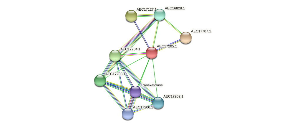 UMN179_01182 protein (Gallibacterium anatis) - STRING interaction network