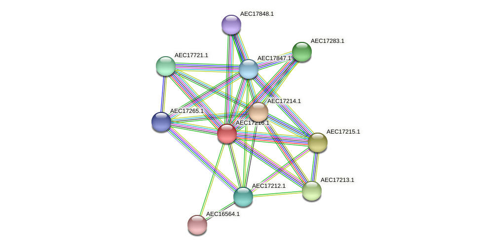 UMN179_01193 protein (Gallibacterium anatis) - STRING interaction network