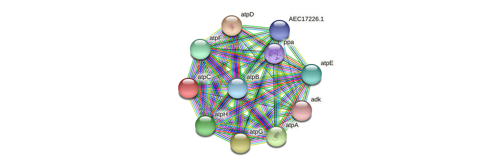 atpC protein (Gallibacterium anatis) - STRING interaction network