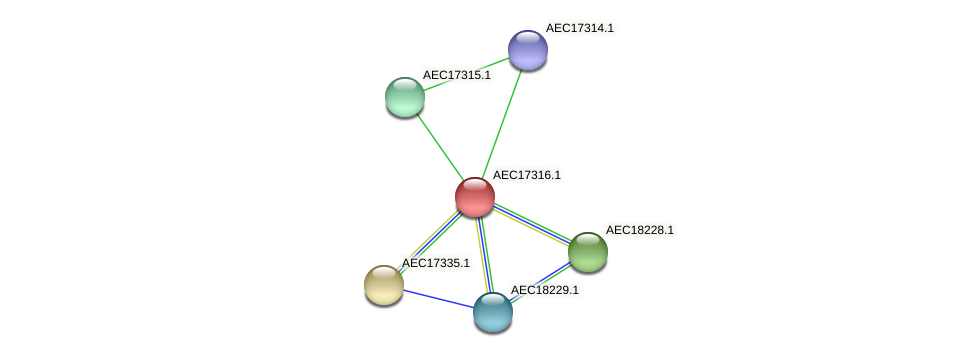 UMN179_01297 protein (Gallibacterium anatis) - STRING interaction network