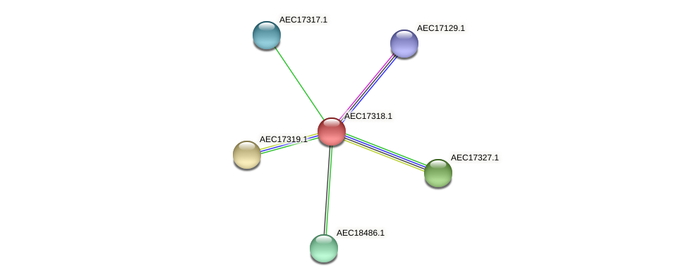 UMN179_01299 protein (Gallibacterium anatis) - STRING interaction network