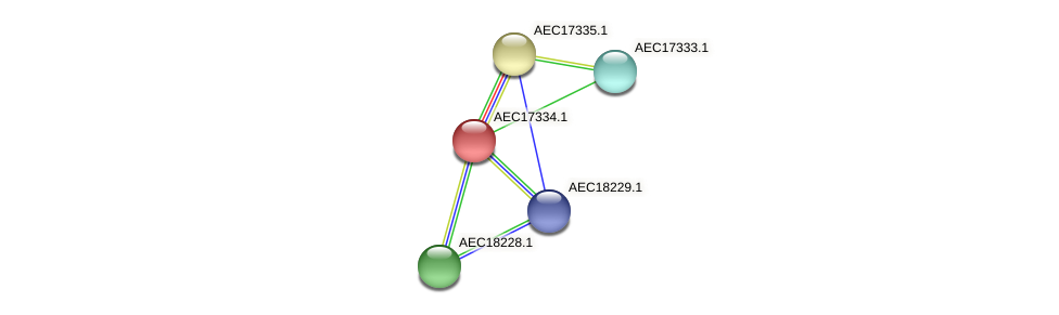 UMN179_01315 protein (Gallibacterium anatis) - STRING interaction network