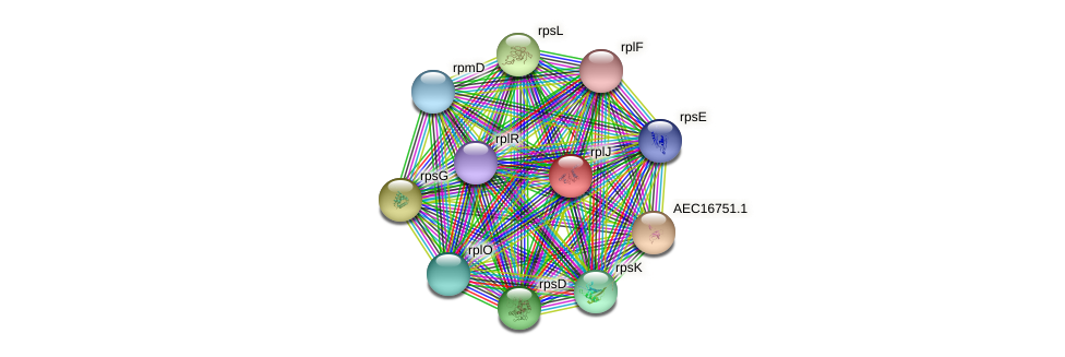 rplJ protein (Gallibacterium anatis) - STRING interaction network