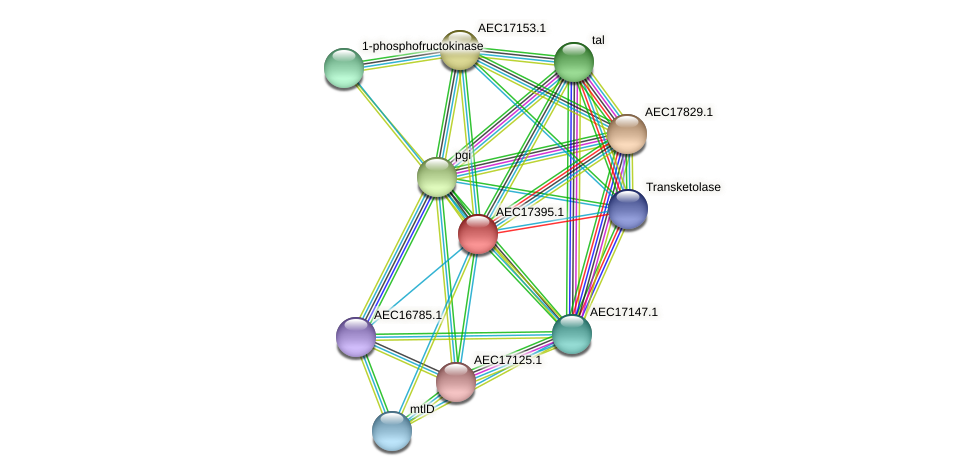 UMN179_01376 protein (Gallibacterium anatis) - STRING interaction network