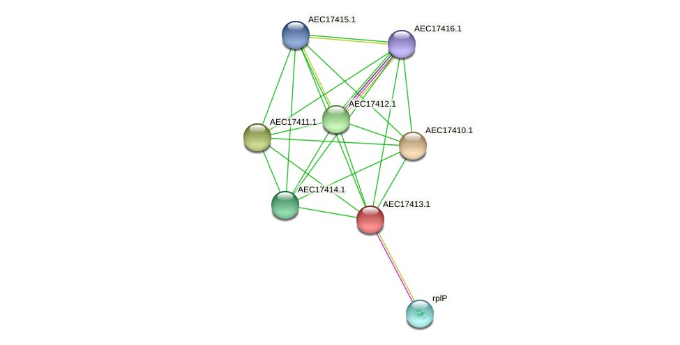UMN179_01394 protein (Gallibacterium anatis) - STRING interaction network