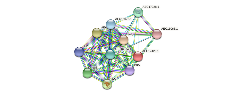 UMN179_01401 protein (Gallibacterium anatis) - STRING interaction network