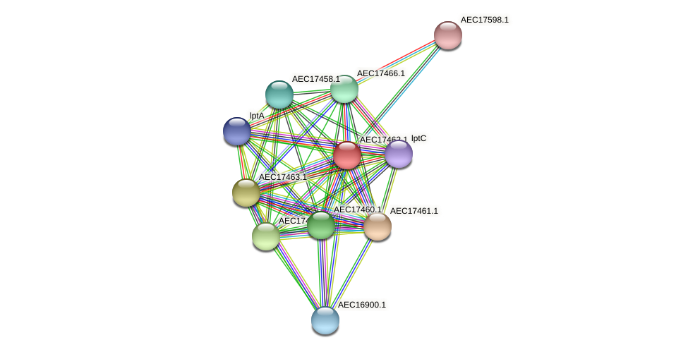 UMN179_01443 protein (Gallibacterium anatis) - STRING interaction network