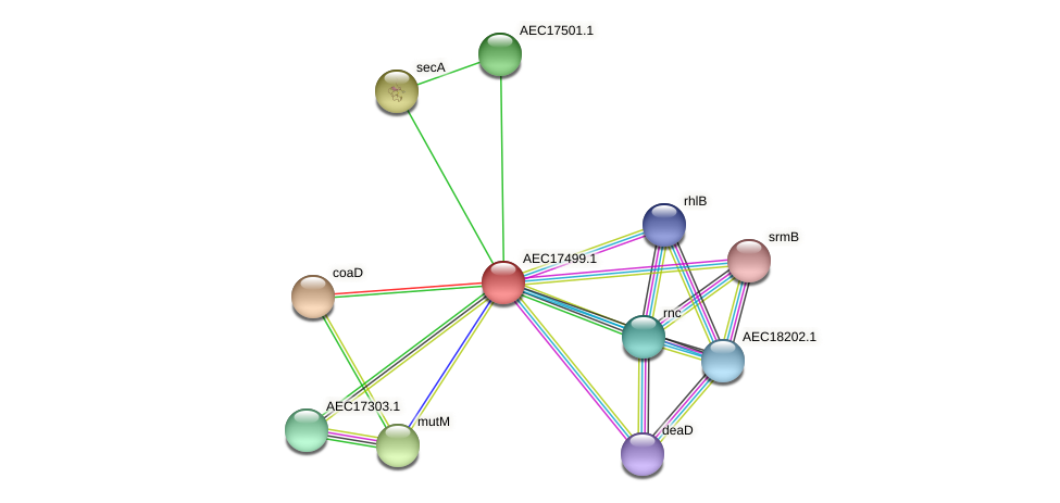 UMN179_01482 protein (Gallibacterium anatis) - STRING interaction network