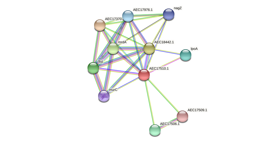 UMN179_01493 protein (Gallibacterium anatis) - STRING interaction network