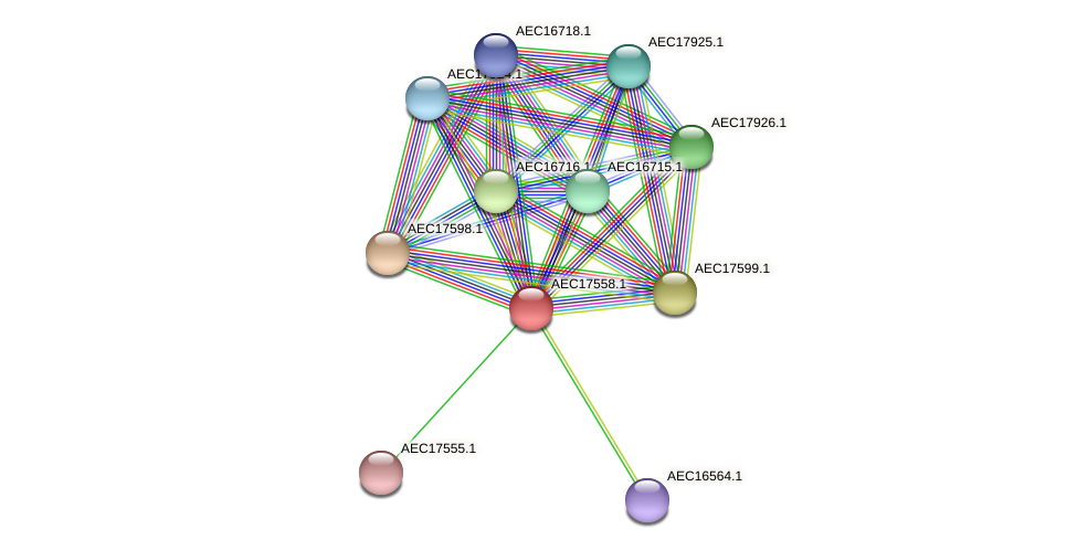 UMN179_01541 protein (Gallibacterium anatis) - STRING interaction network