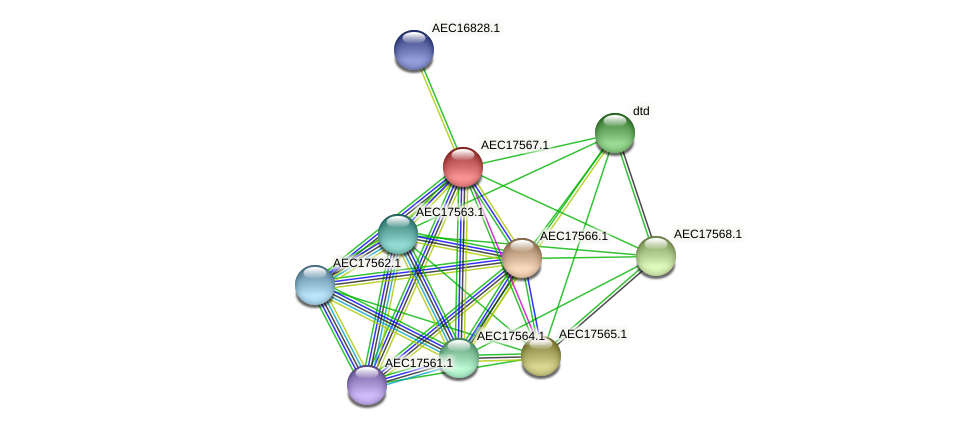 UMN179_01550 protein (Gallibacterium anatis) - STRING interaction network