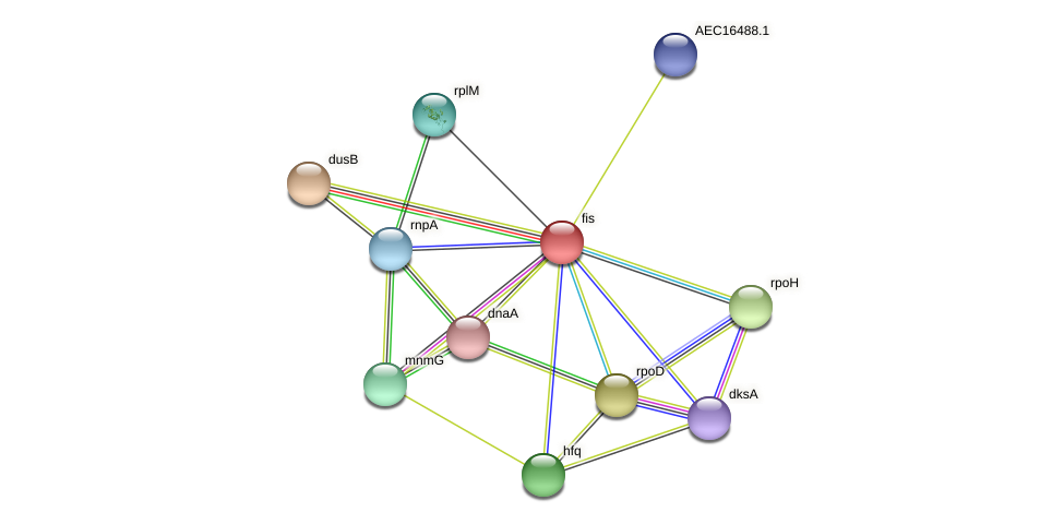 fis protein (Gallibacterium anatis) - STRING interaction network