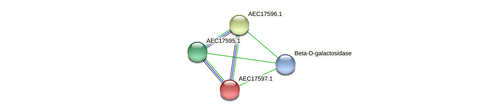 UMN179_01580 protein (Gallibacterium anatis) - STRING interaction network