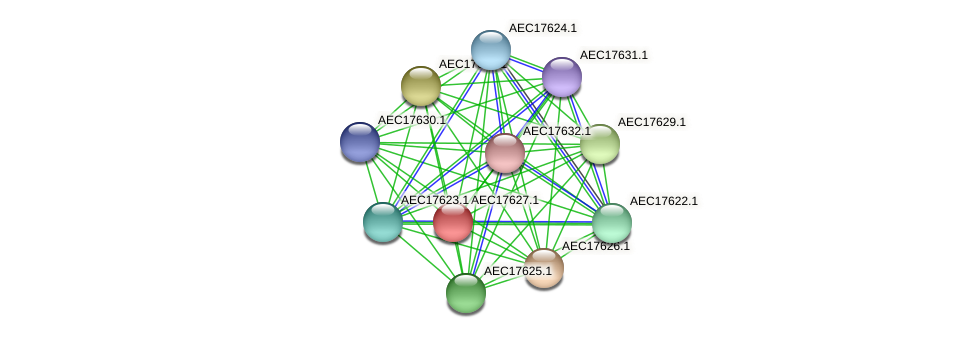 UMN179_01610 protein (Gallibacterium anatis) - STRING interaction network