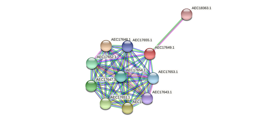 UMN179_01632 protein (Gallibacterium anatis) - STRING interaction network