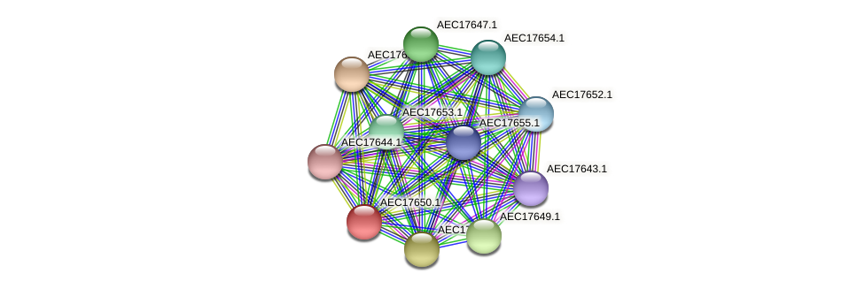 UMN179_01633 protein (Gallibacterium anatis) - STRING interaction network