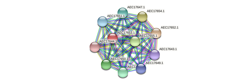 UMN179_01636 protein (Gallibacterium anatis) - STRING interaction network