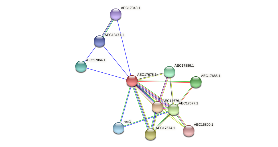 UMN179_01658 protein (Gallibacterium anatis) - STRING interaction network