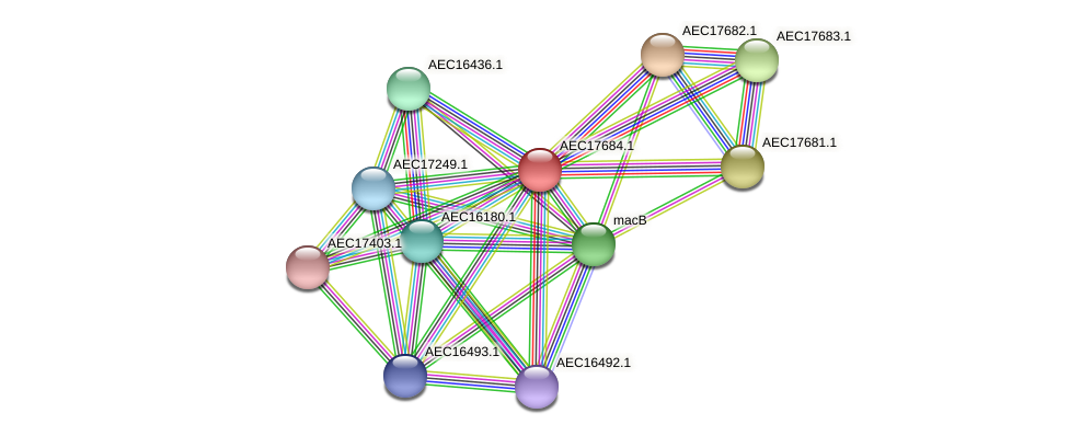 UMN179_01667 protein (Gallibacterium anatis) - STRING interaction network