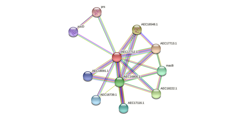 UMN179_01697 protein (Gallibacterium anatis) - STRING interaction network