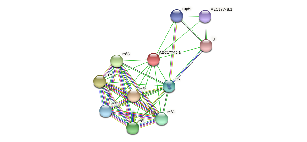 UMN179_01731 protein (Gallibacterium anatis) - STRING interaction network