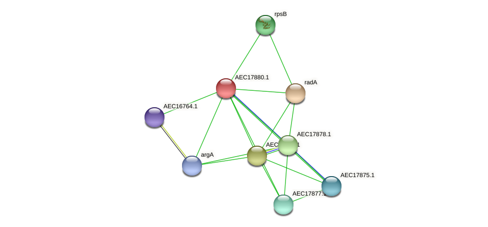 UMN179_01865 protein (Gallibacterium anatis) - STRING interaction network