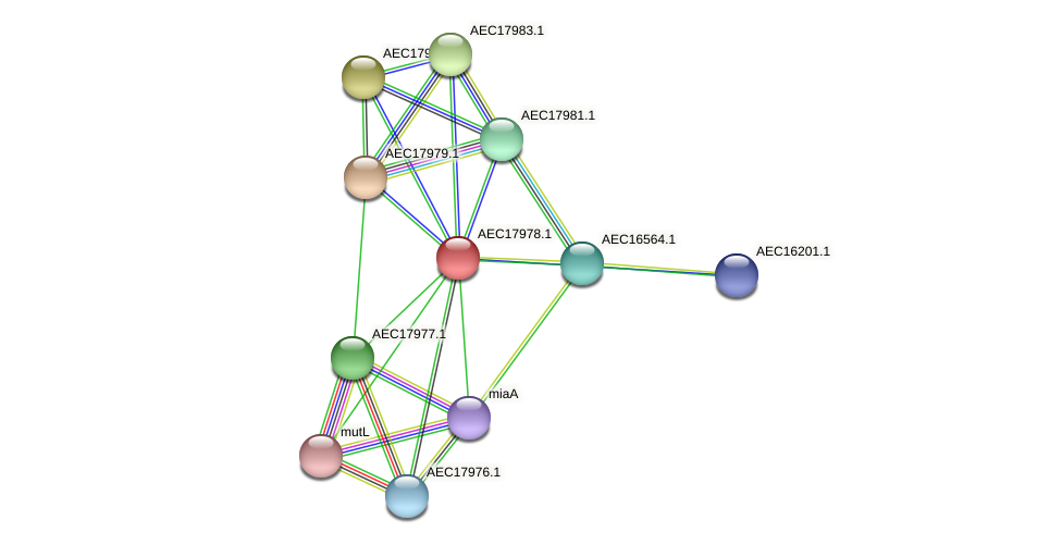 UMN179_01965 protein (Gallibacterium anatis) - STRING interaction network