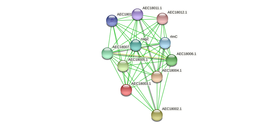 UMN179_01990 protein (Gallibacterium anatis) - STRING interaction network