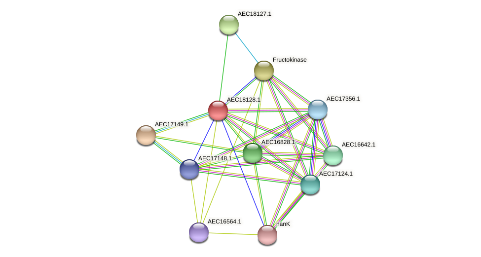 UMN179_02115 protein (Gallibacterium anatis) - STRING interaction network