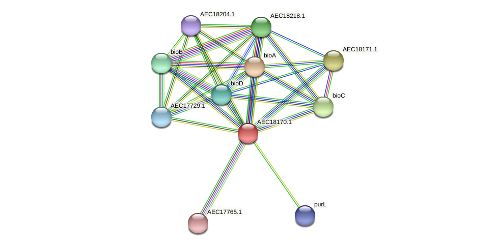 UMN179_02157 protein (Gallibacterium anatis) - STRING interaction network