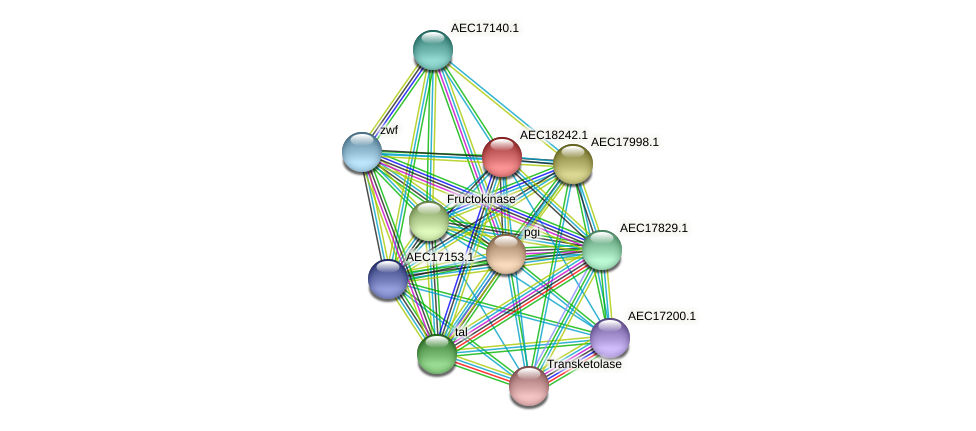UMN179_02229 protein (Gallibacterium anatis) - STRING interaction network