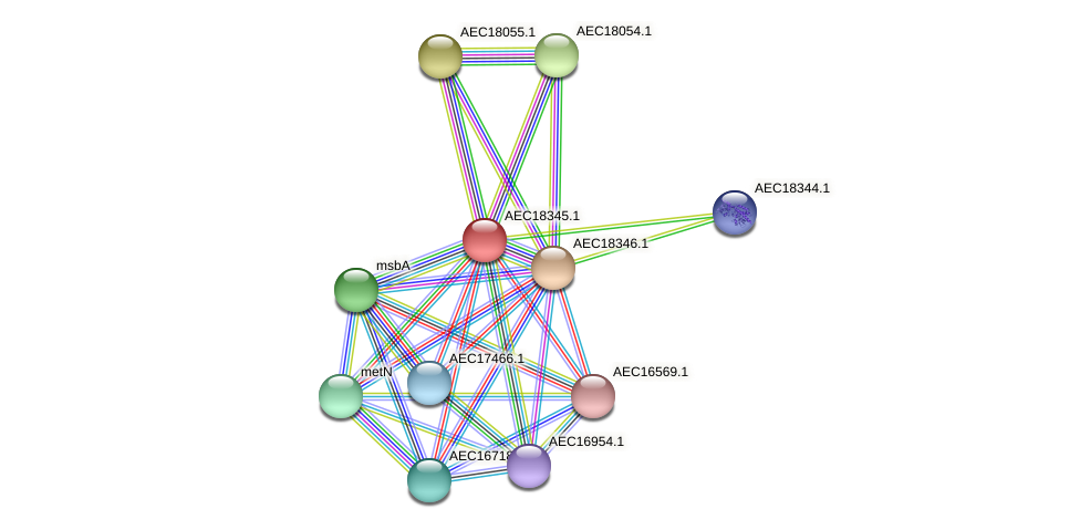 UMN179_02336 protein (Gallibacterium anatis) - STRING interaction network