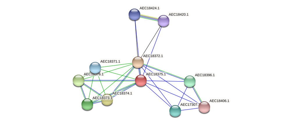 UMN179_02366 protein (Gallibacterium anatis) - STRING interaction network
