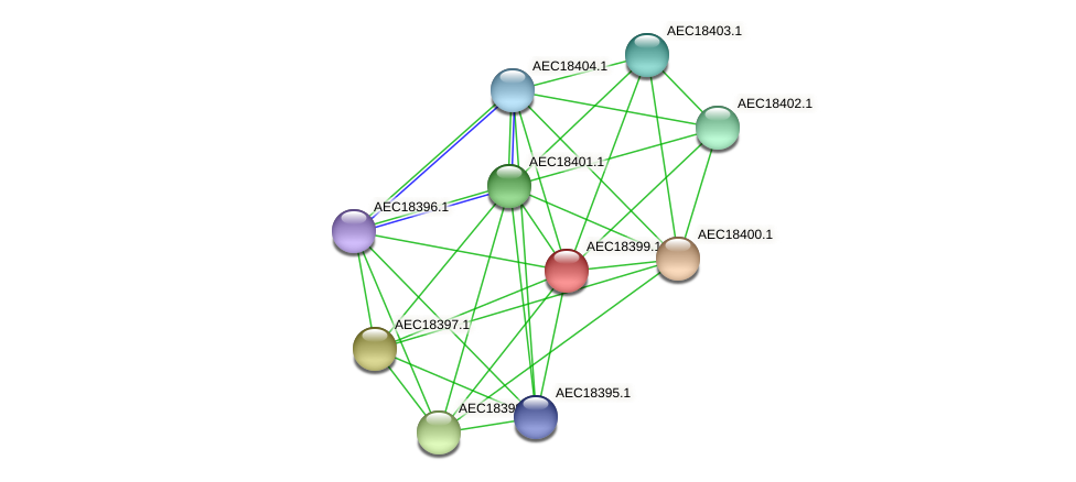 UMN179_02390 protein (Gallibacterium anatis) - STRING interaction network