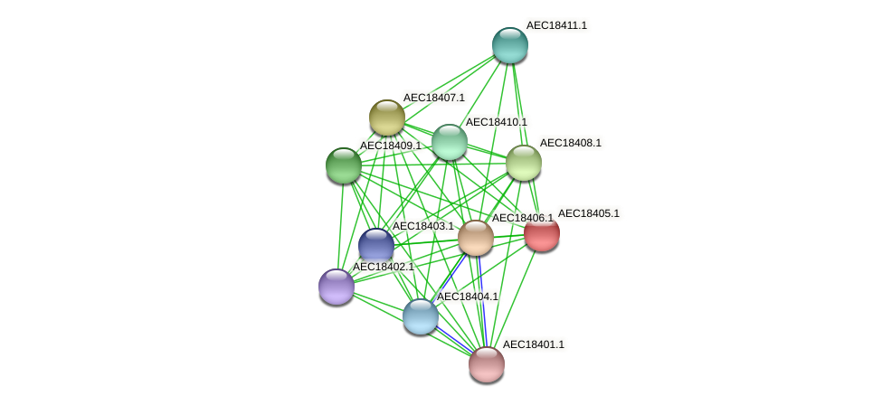 UMN179_02396 protein (Gallibacterium anatis) - STRING interaction network