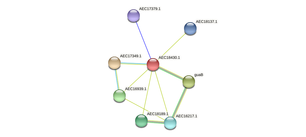 UMN179_02423 protein (Gallibacterium anatis) - STRING interaction network