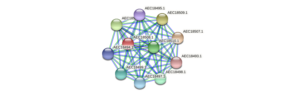 UMN179_02501 protein (Gallibacterium anatis) - STRING interaction network