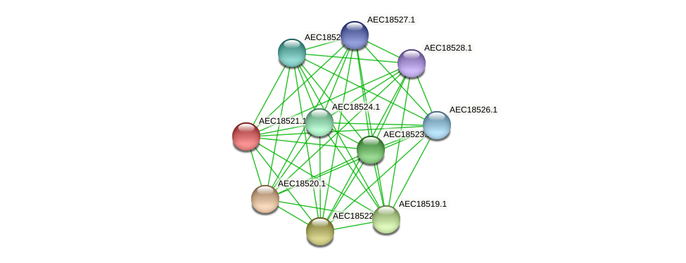 UMN179_02514 protein (Gallibacterium anatis) - STRING interaction network