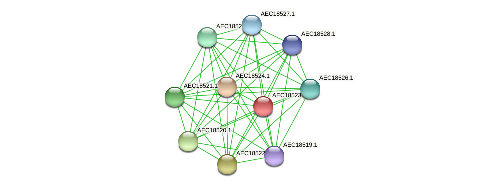UMN179_02516 protein (Gallibacterium anatis) - STRING interaction network