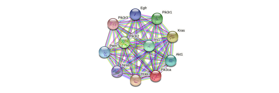Pik3ca protein (mouse) - STRING interaction network