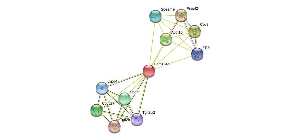 Fam154a protein (mouse) - STRING interaction network