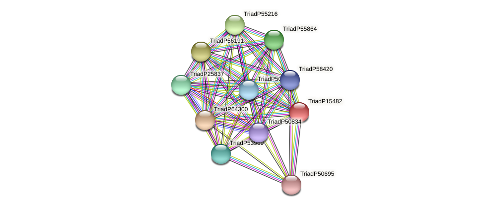 TriadP15482 protein (Trichoplax adhaerens) - STRING interaction network