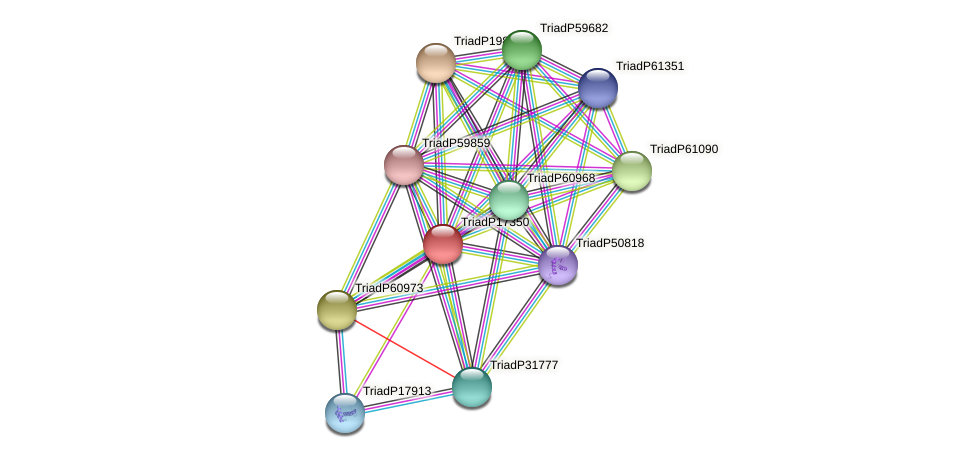 TriadP17350 protein (Trichoplax adhaerens) - STRING interaction network