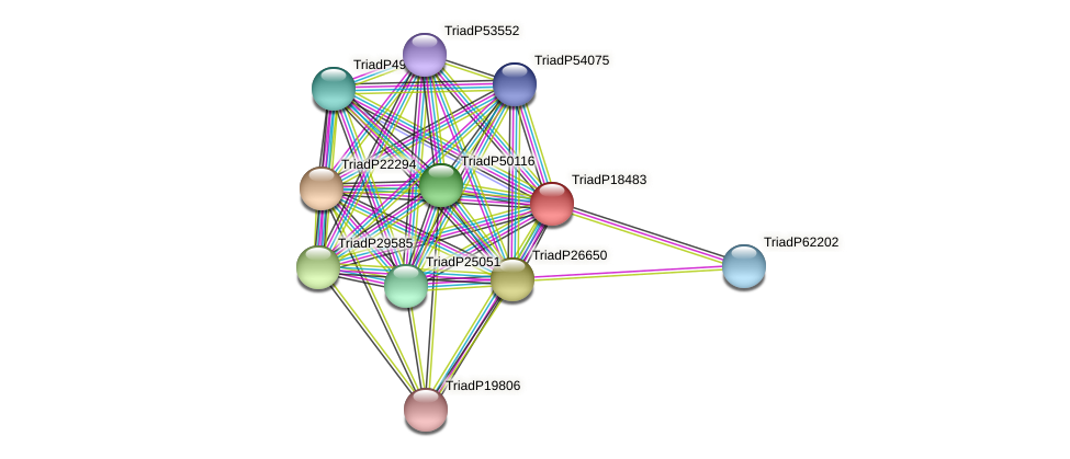 TriadP18483 protein (Trichoplax adhaerens) - STRING interaction network