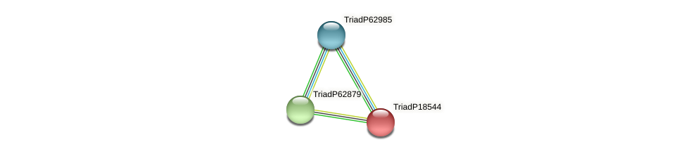 TriadP18544 protein (Trichoplax adhaerens) - STRING interaction network