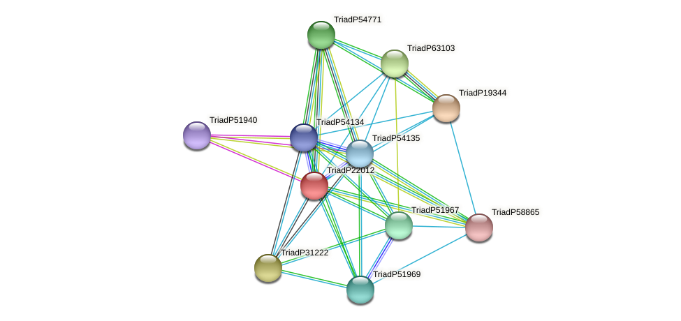 TriadP22012 protein (Trichoplax adhaerens) - STRING interaction network