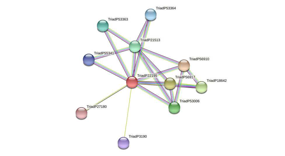 TriadP22195 protein (Trichoplax adhaerens) - STRING interaction network
