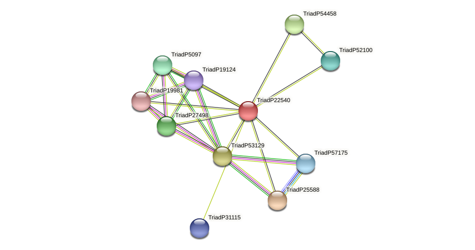 TriadP22540 protein (Trichoplax adhaerens) - STRING interaction network
