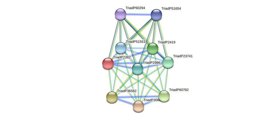 TriadP2382 protein (Trichoplax adhaerens) - STRING interaction network